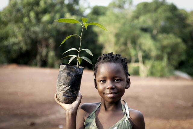 Tree planting campaign in Mbarara
