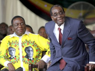 The paradox of Mugabe - Mnangagwa transition