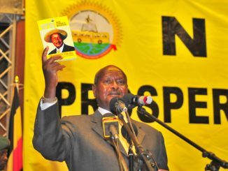A brief history of the NRM