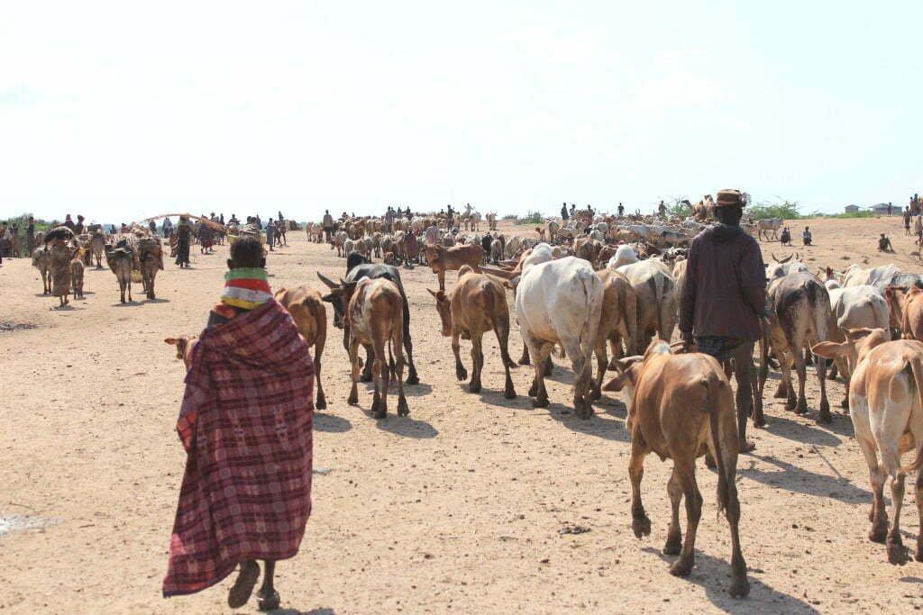 Kaabong District pastoralists