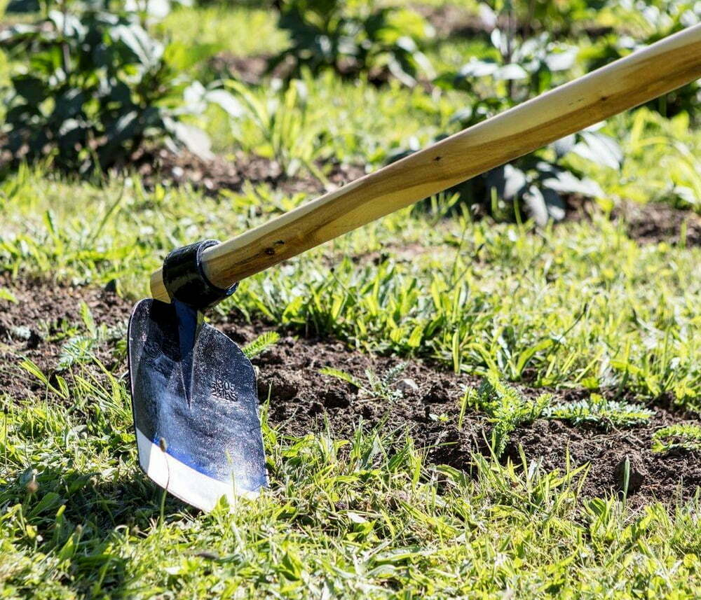 Man kills mother with a digging hoe