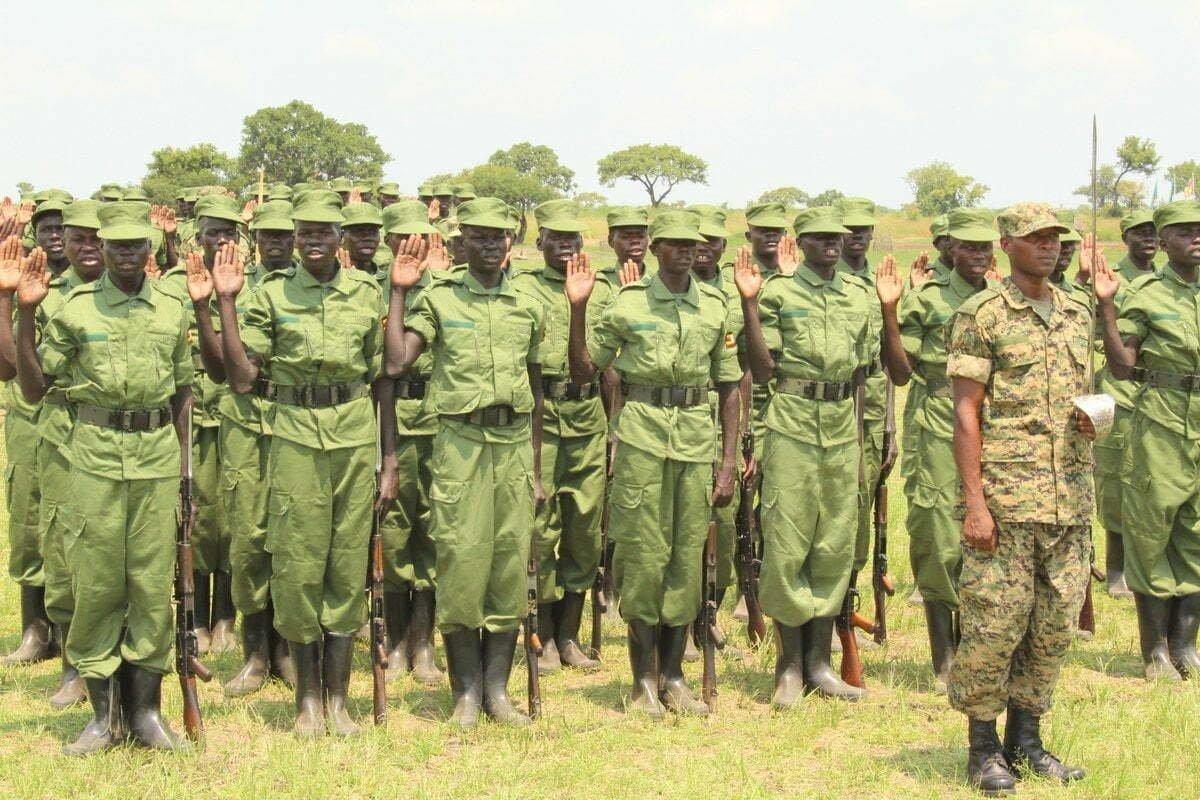 Local Defense Unit (LDU)