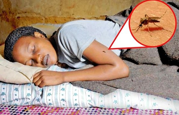 Malaria outbreak feared in Kampala, do you sleep under a treated mosquito net?