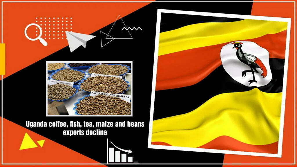 Coffee, fish, tea, maize and beans exports from Uganda