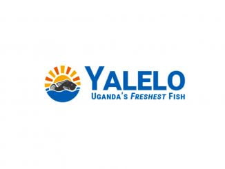 Jobs: Mechanical Technician - Yalelo Uganda