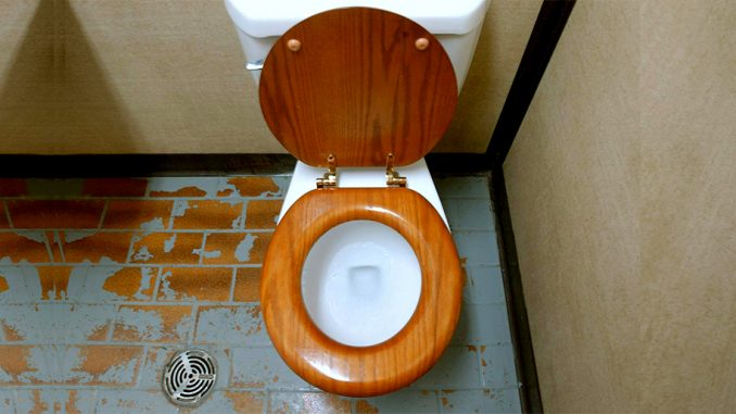 Study suggests coronavirus could spread in spray from toilet