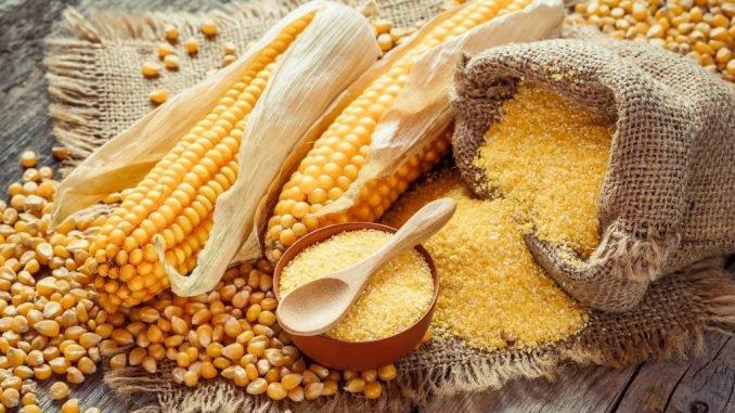 Processing-Maize-Flour