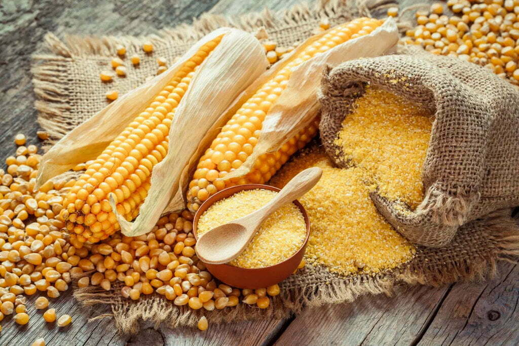 Processing-Maize-Flour