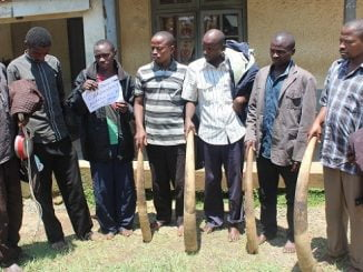 Six policemen, four soldiers arrested in Uganda over wildlife poaching